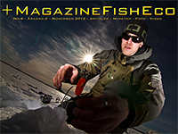 +MagazineFishEco #4 2012