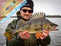 +MagazineFishEco #6 2015