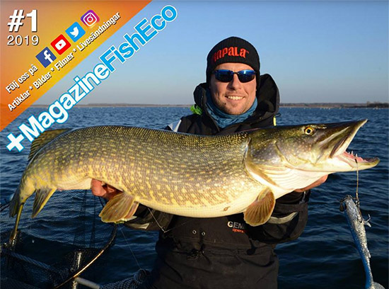 +MagazineFishEco #1 2019